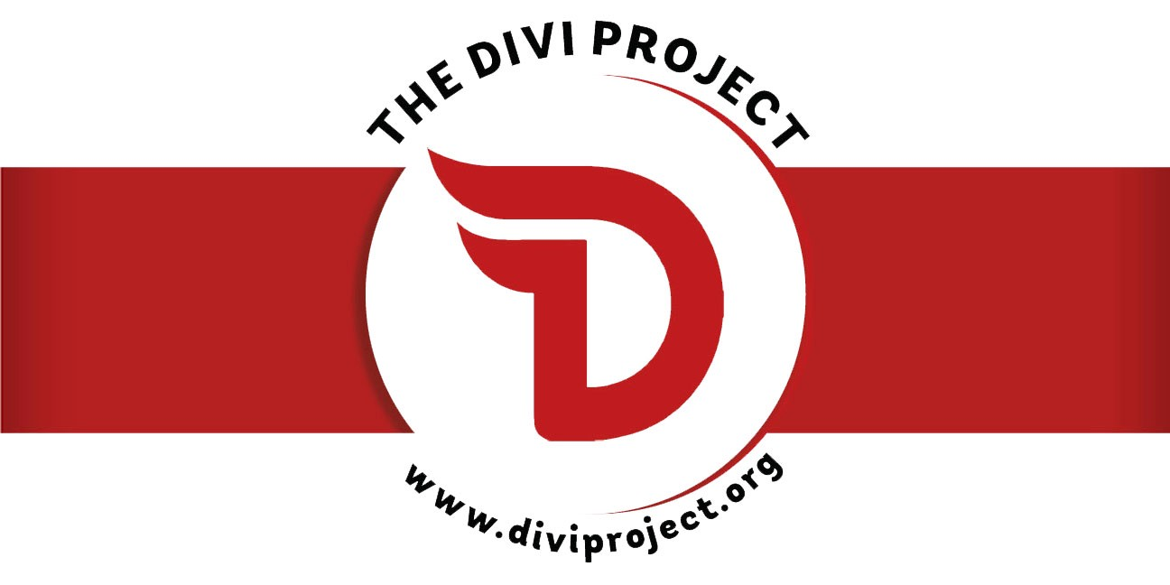 Image result for divi project